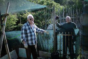 La comunità che germoglia: gli orti di Ponte della Pietra
